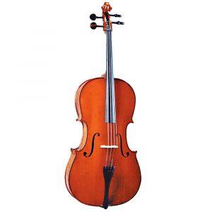 Cellos & Double Bass