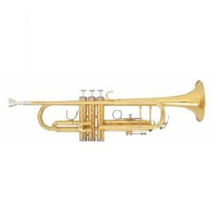Trumpet & Other Brass Instruments